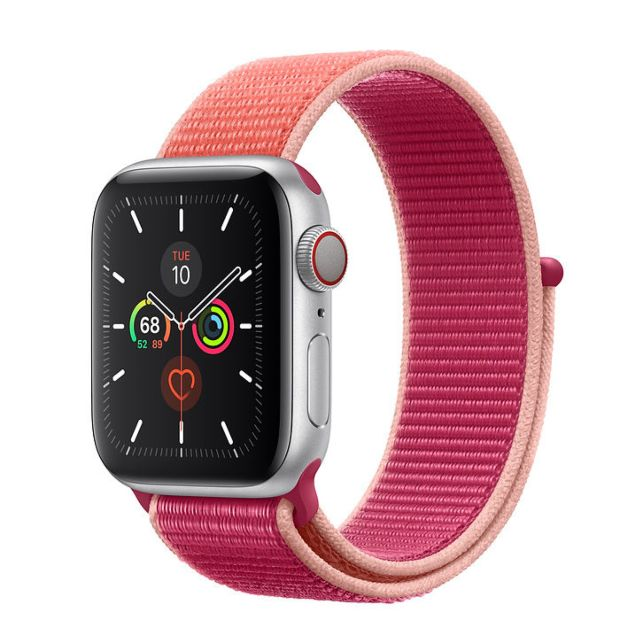 Apple Watch Series 5 GPS + Cellular, 40mm Silver Aluminum Case with Pomegranate Sport Loop