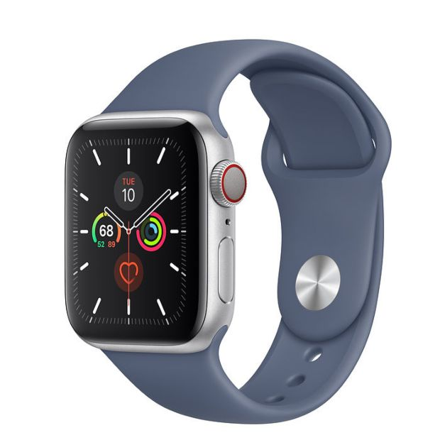 Apple Watch Series 5 GPS + Cellular, 40mm Silver Aluminum Case with Alaskan Blue Sport Band