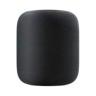 Apple HomePod Space Gray MQHW2